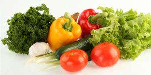 Dietas saludables Intur Colectividades