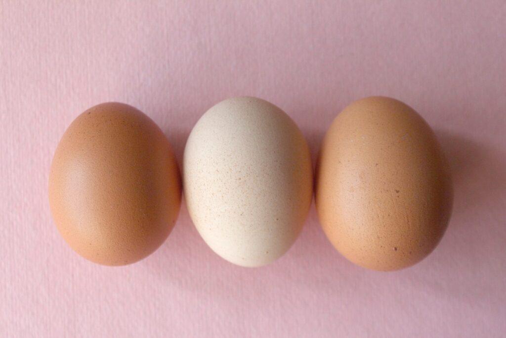huevo fuente de vitamina D